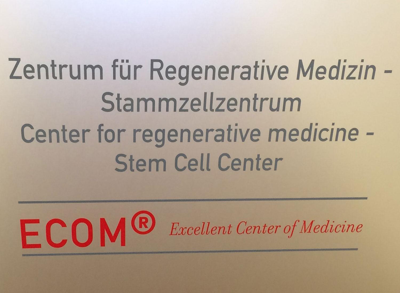 Zentrum für Regenerative Medizin und Stammzelltherapie